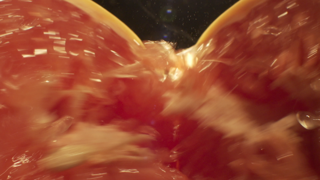 Grapefruit being ripped apart while lens pushes through the middle