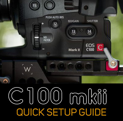 5 steps to color perfect c100 footage using LUTs - Dan McComb